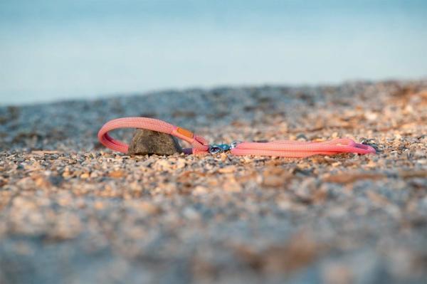 Schlupfhalsband und Führleine Farbkombination Honolulu Sunset LILLI (Kletterseil)
