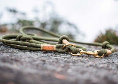 Halsband und Leinen Set in der Farbkombination Olive Grove GOLDNUGGET