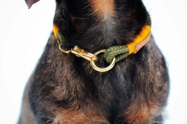 Dackel Kalle mit Halsband Olive Grove GOLD (Softtau)