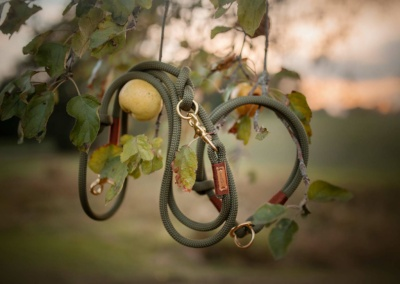 Herbstmotiv: Zugstopp mit Leine olive grove MAROON (Kletterseil)