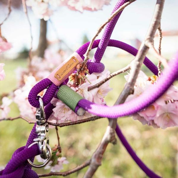Retrieverleine Purple Pleasure TULIP